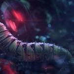 rugbybugs_caterpillar